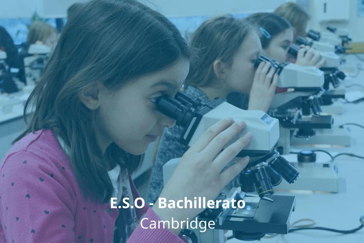 Información bachillerato Internacional en Cambridge